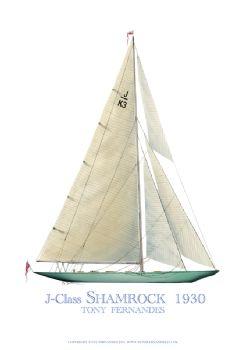 1930 Shamrock - signed print